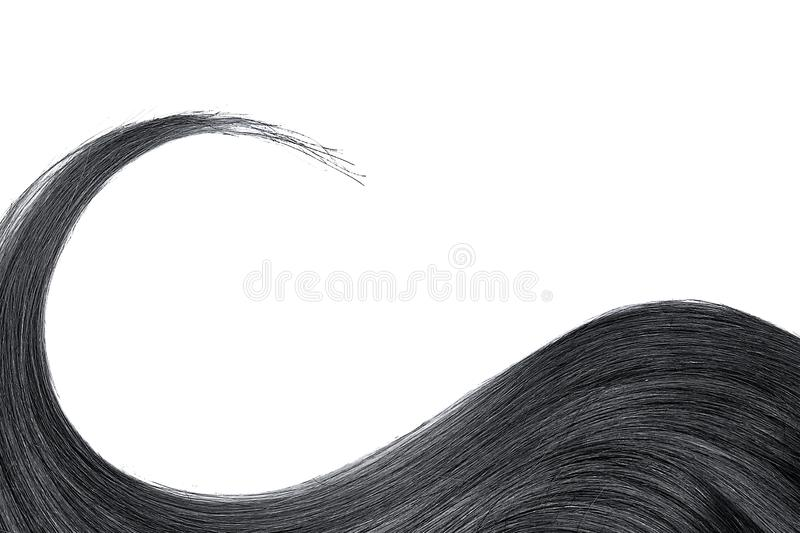 Black hair isolated on white background. Long wavy ponytail. Natural healthy hair isolated on white background. Detailed clipart for your collages and royalty free stock photography