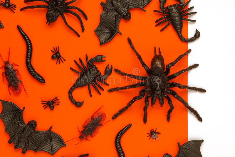 Black Halloween creepy bugs and spiders on orange background with blank white space for text or image royalty free stock photo