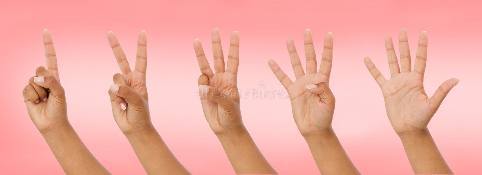 Black hand showing one to five fingers count signs isolated on pink background with Clipping path included. Communication gestures royalty free stock photo