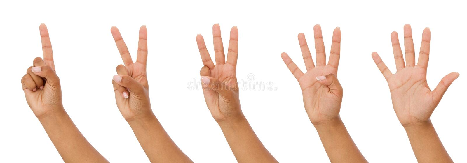 Black hand showing one to five fingers count signs isolated on white background with Clipping path included. Communication gesture royalty free stock photo