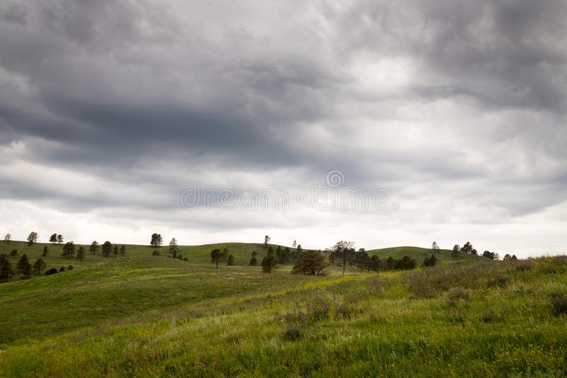 Black Hills Dakota del Sur foto de archivo libre de regalías