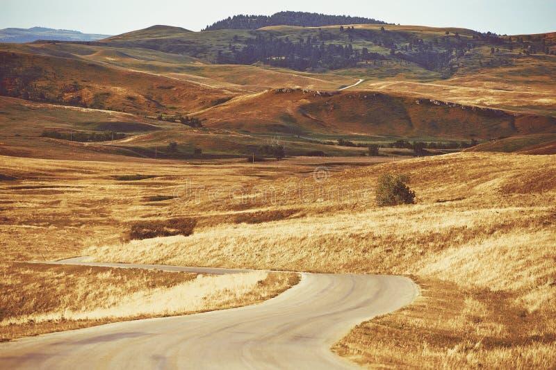 Black Hills le Dakota du Sud photos libres de droits