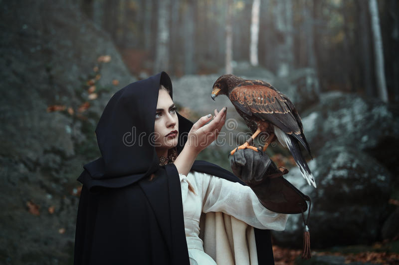 Black hooded huntress with hawk stock photo