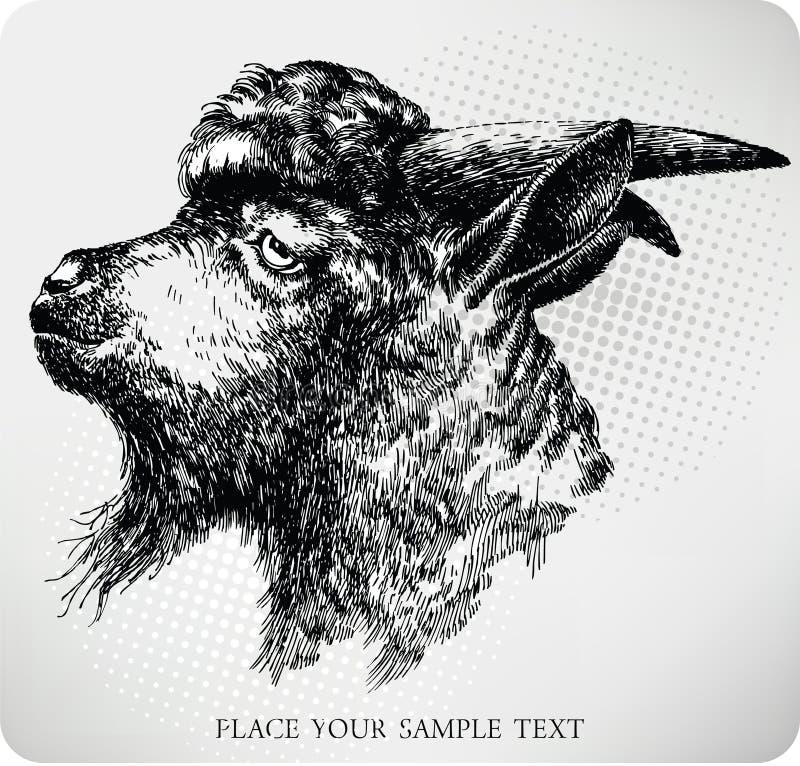 Black horned goat, hand-drawing. Vector vector illustration