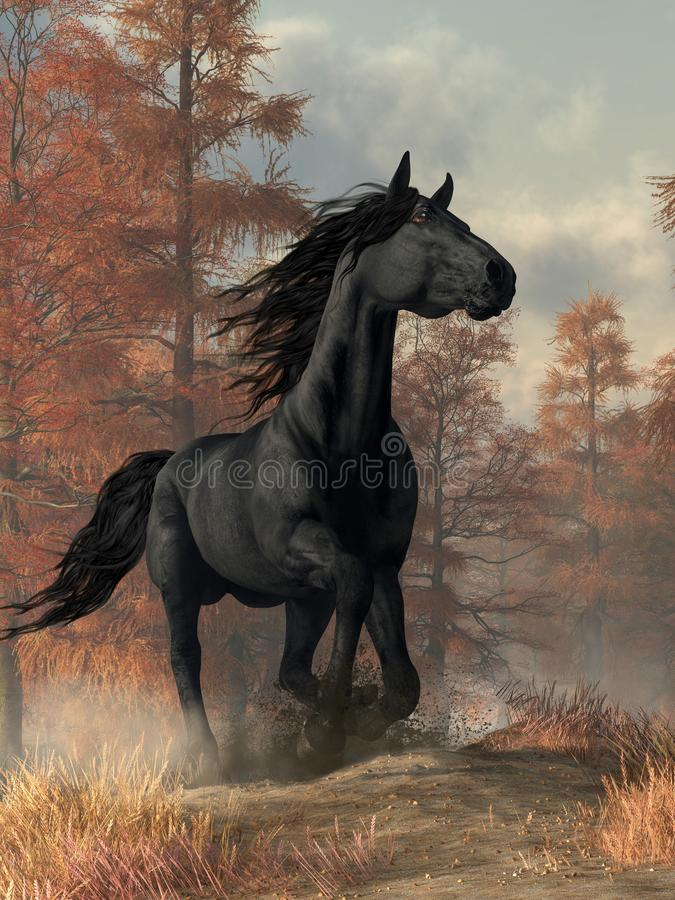 Free Black Horse Stock Photos - 139322833