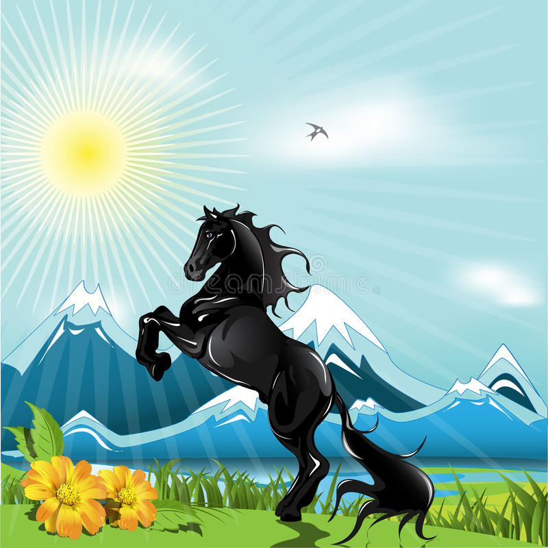 Download Black Horse Royalty Free Stock Photography - Image: 14174767