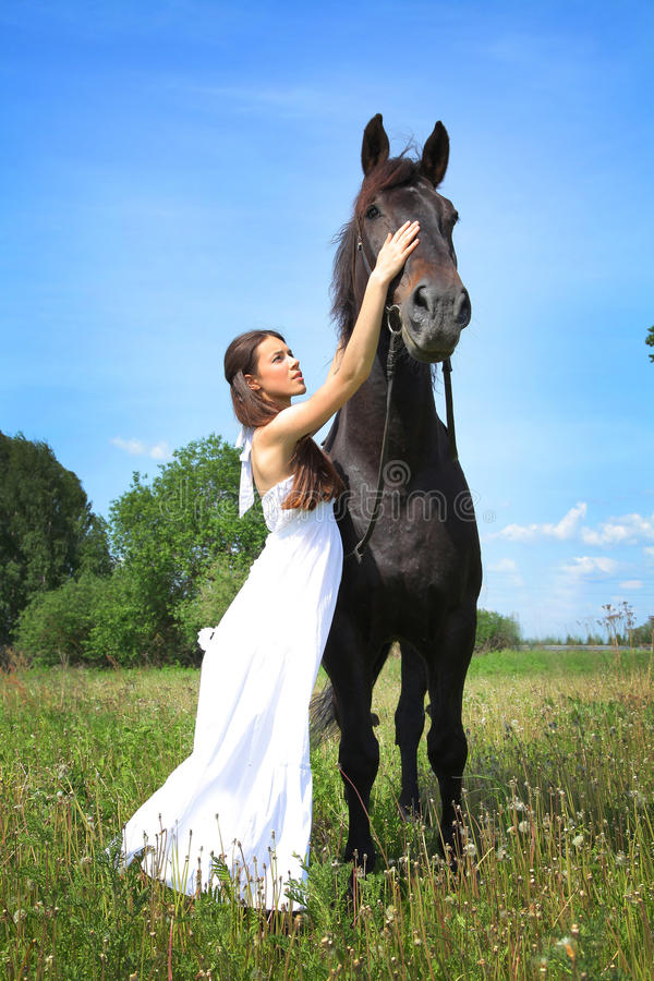 Download Black Horse Stock Photography - Image: 31411632