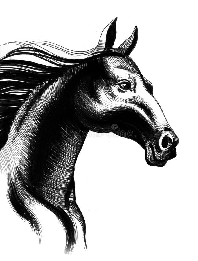 Black horse vector illustration