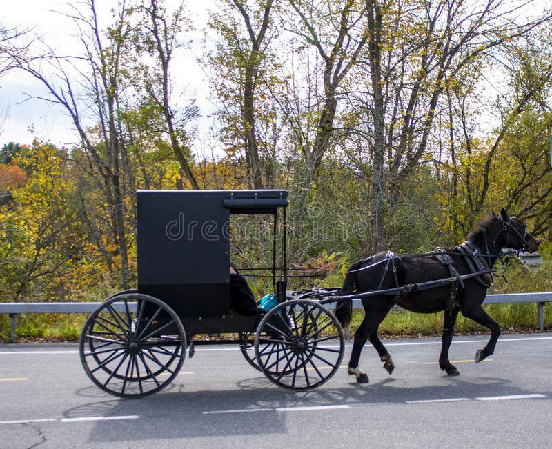 Black Horse pulls an Amish Carriage in Upper New York State during Autumn. An Amish couple riding through a small town in Upper New York State during the New stock photo