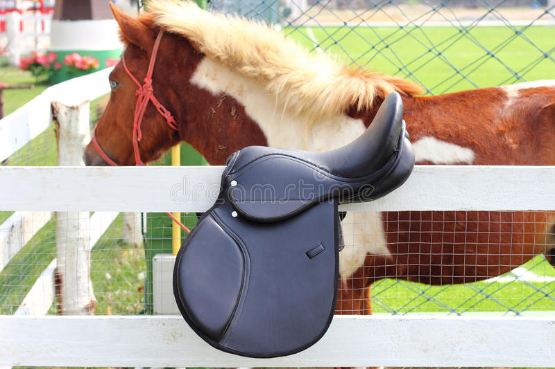 Black horse saddle stock photography