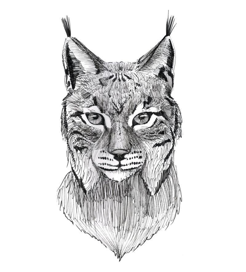 Black Ink Tattoo Hand Drawn Lynx Portrait royalty free illustration