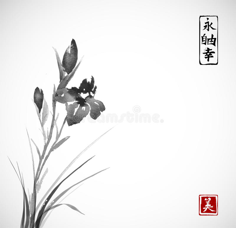 Black Iris flowers hand drawn with ink in asian style on white background. Traditional oriental ink painting sumi-e, u. Sin, go-hua. Contains hieroglyphs royalty free illustration