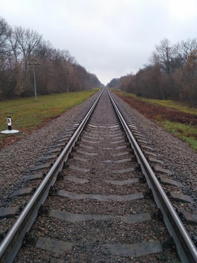 Black iron rails background. Autumn landscape. Railway backdrop. Train transportation stock photo