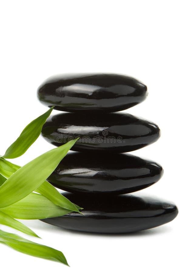 black isolerade leavesbrunnsortstenar royaltyfria foton