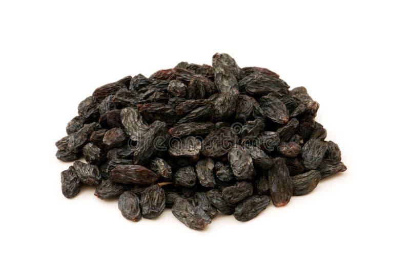 black isolerade russin royaltyfri bild