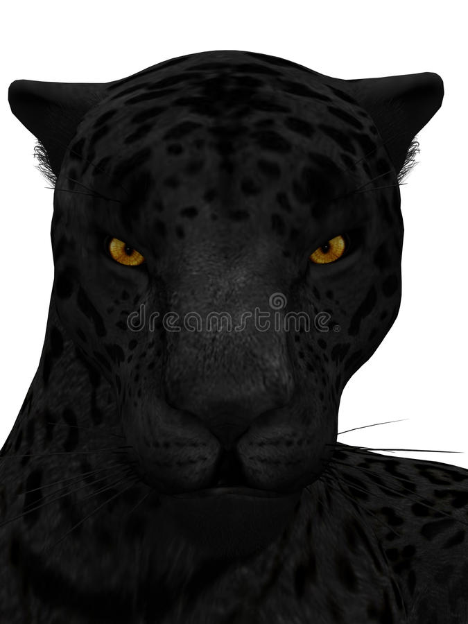 Black jaguar isolated on white. royalty free illustration
