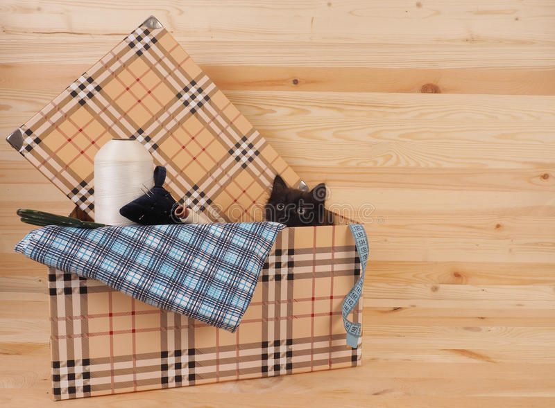 Black kitten in a box with items for sewing.  stock images