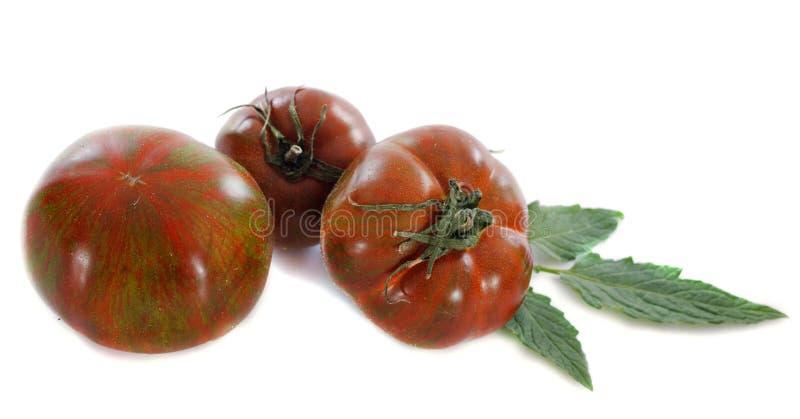 Black Krim tomato stock images