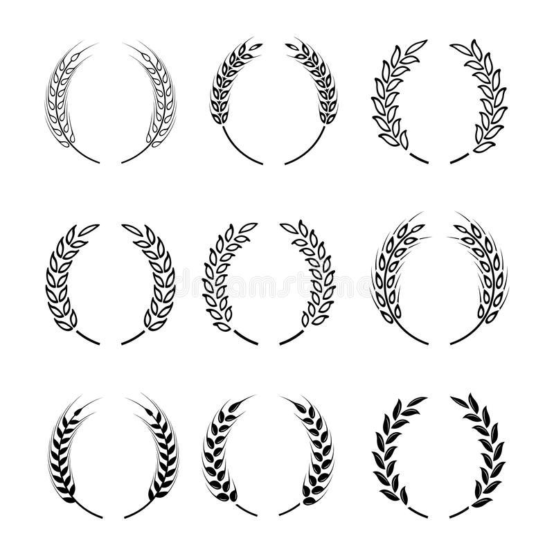 Black laurel wreath - a symbol of the winner. Wheat ears or rice icons set. vector illustration