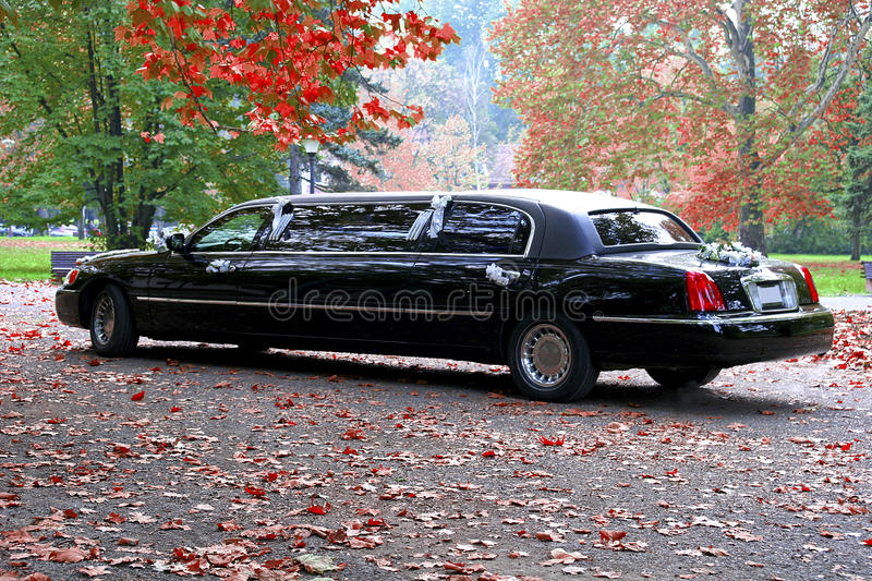 Black Limousine. Big black Limousine for wedding royalty free stock photography
