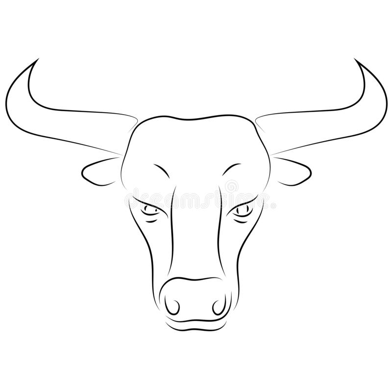 Black Line Bull Head On White Background Hand Drawing Vector S