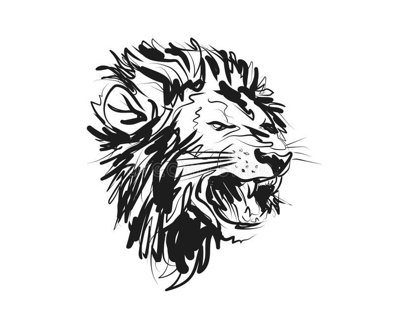 Vector sketch lion head royalty free stock photography
