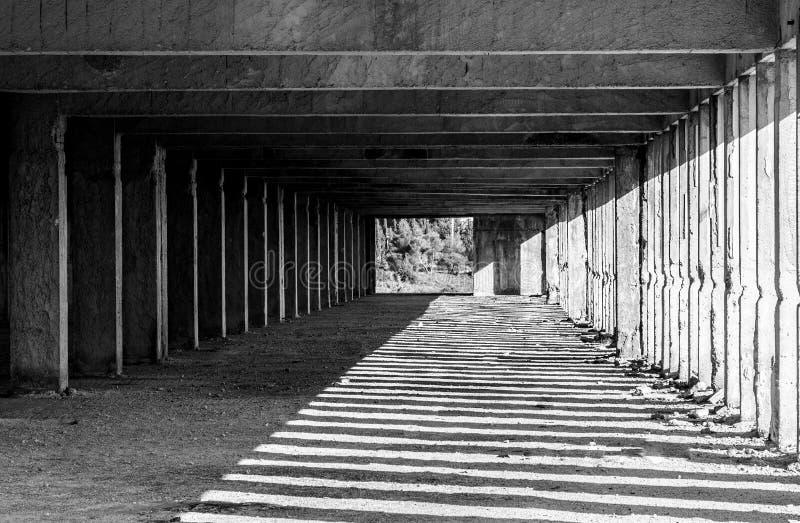 black lines white royaltyfri foto