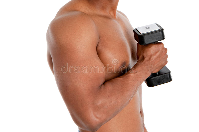 Download Black Male Model Holding Weights Stock Photo - Image: 20664402