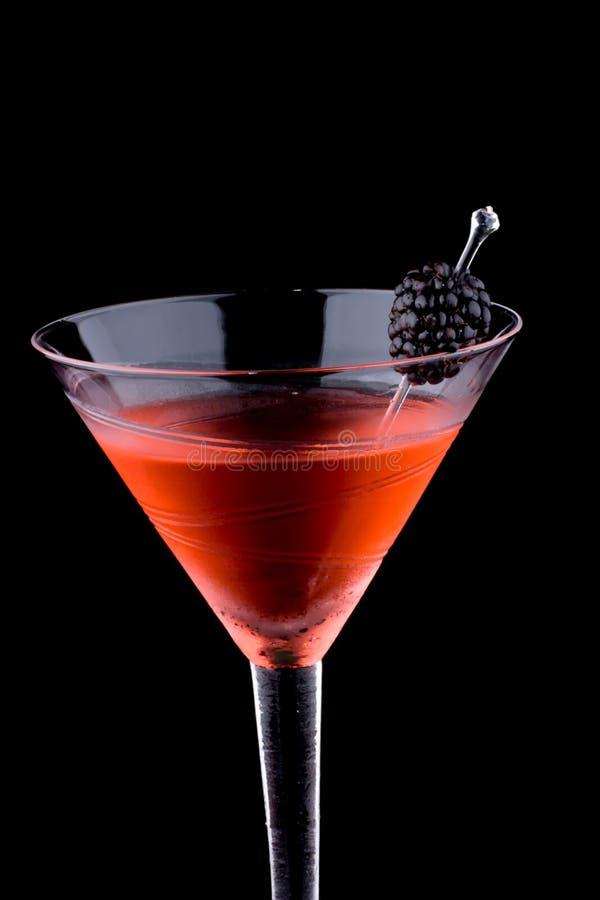 Free Black Martini - Most Popular Cocktails Series Stock Photos - 7721833