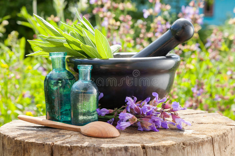 Black mortar with sage herbs, glass bottles of essential oil. Outdoors. Herbal medicine royalty free stock photography