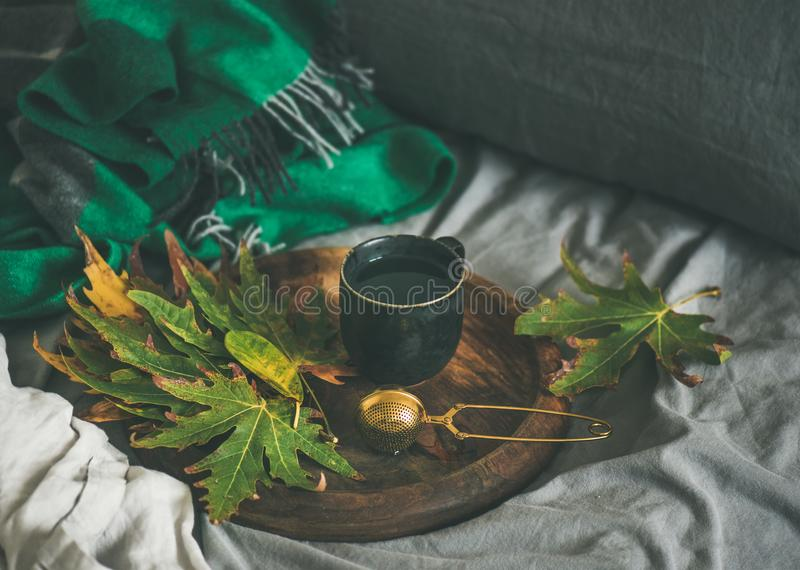 Black mug of tea with sieve and leaves on tray. Fall morning tea in bed. Black mug of tea with sieve and fallen leaves on wooden tray over bed linen and blanket stock photography