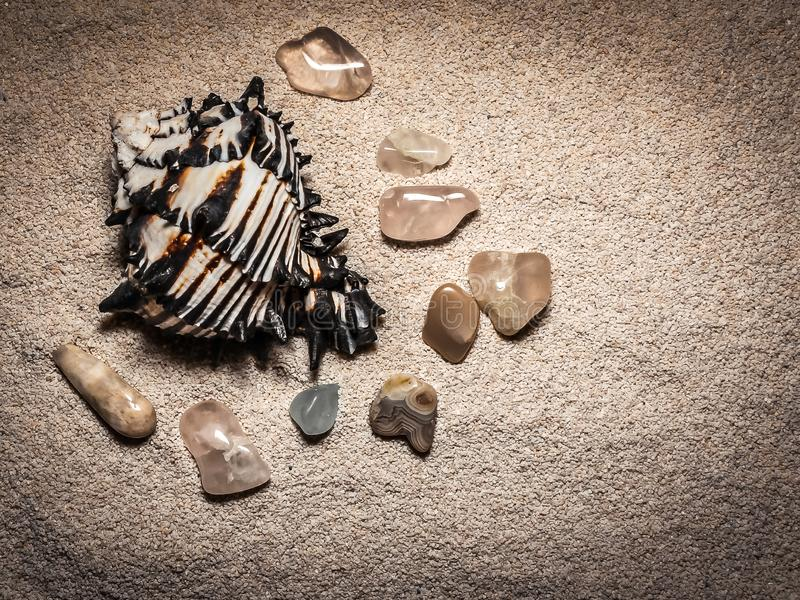 Black Murex Seashell and Stones. A background of sand with an isolated black murex spiked seashell and tumbled semi-precious stones stock image