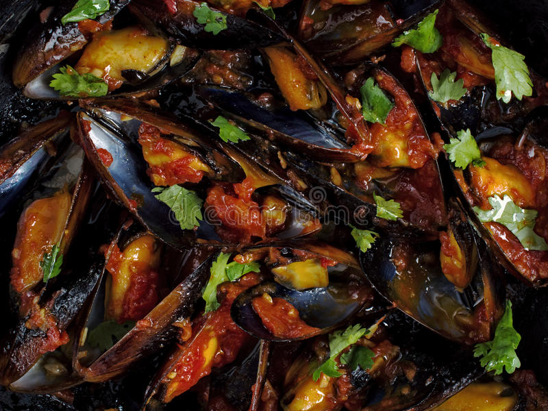 Black mussel in tomato sauce food background stock images