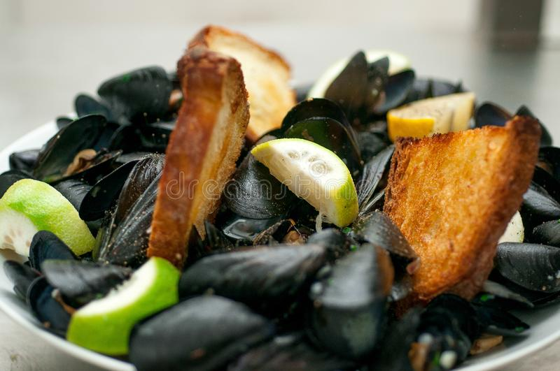 Black mussels with crispy bread on a plate royalty free stock photography