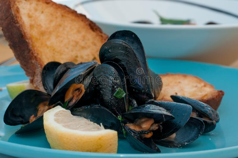 Black mussels with crispy bread on a plate stock photos
