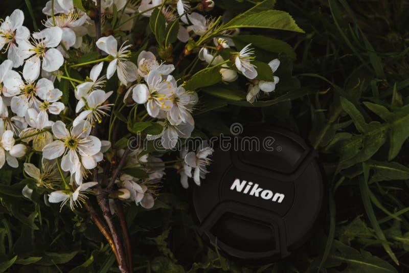 Black Nikon Dslr Camera Lens Cover Near White Petaled Flowers stock images