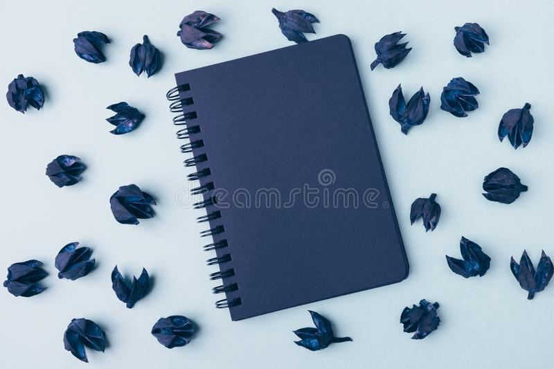 Black notepad on a blue background surrounded by dry plants. Minimalism, background, flat lay. royalty free stock photography