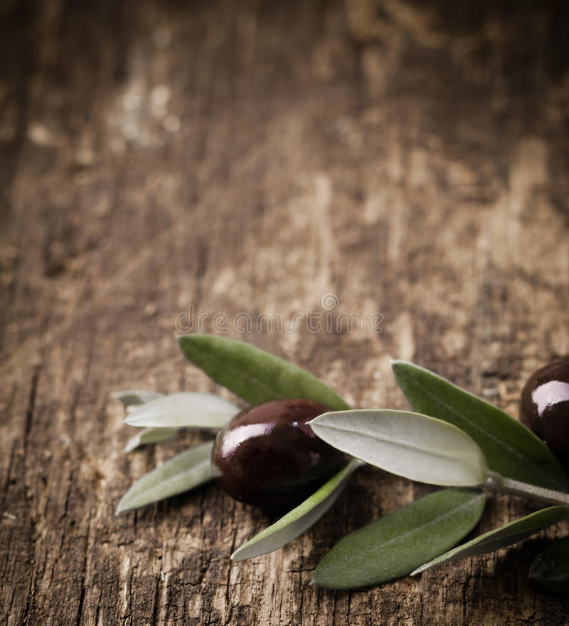 Black olive branch. With leaves and olives lying on a textured weathered wooden table surface with copyspace stock images