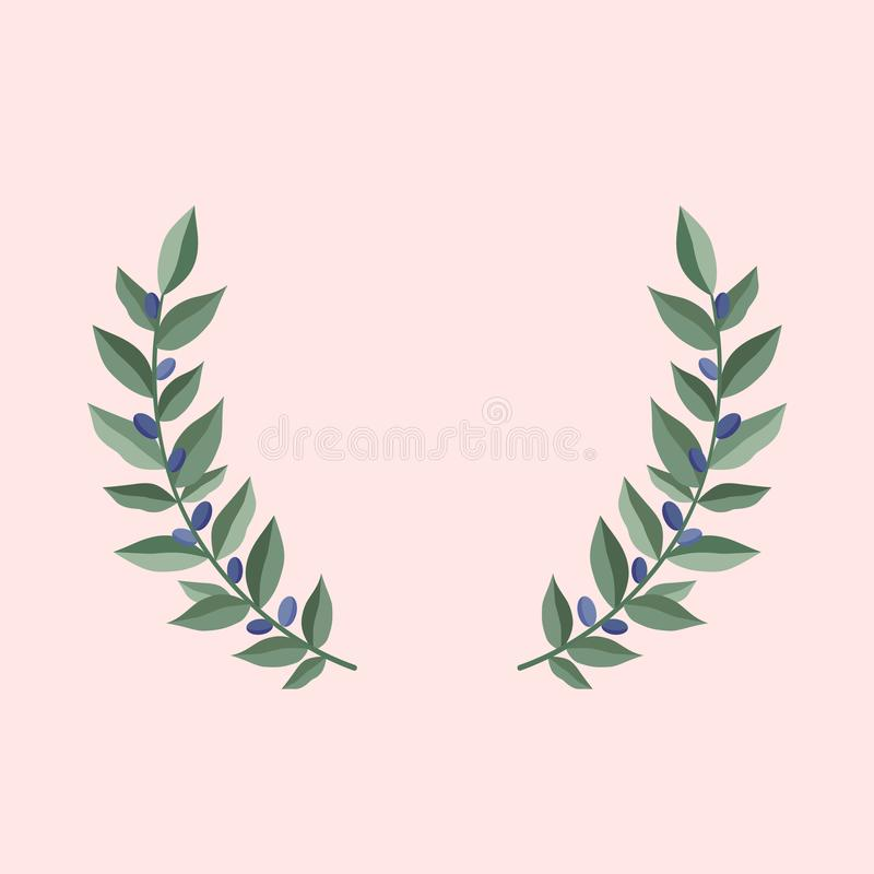 Black olive branches wreath on a dust pink background. Frame from olive leaves. Vintage wreath heraldic design element. With floral frame made up of olive stock illustration