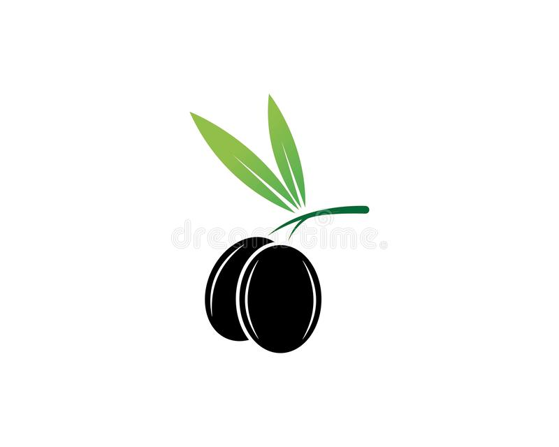 black olive oil with green leaf icon vector vector illustration