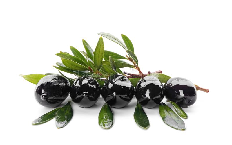 Black olives covered with oil and green leaves on white background royalty free stock photo