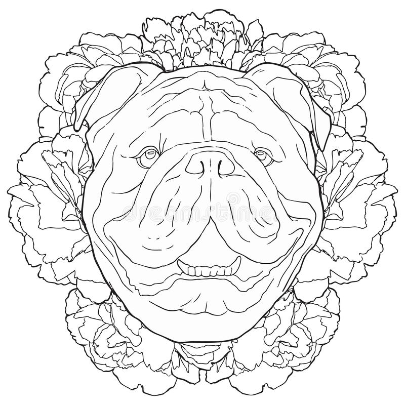 Black outline illustration of bulldog and peonies. Hand drawn dog with floral background royalty free illustration