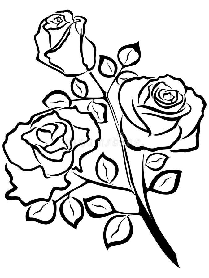Black Outline Of Rose Flowers Stock Vector Illustration