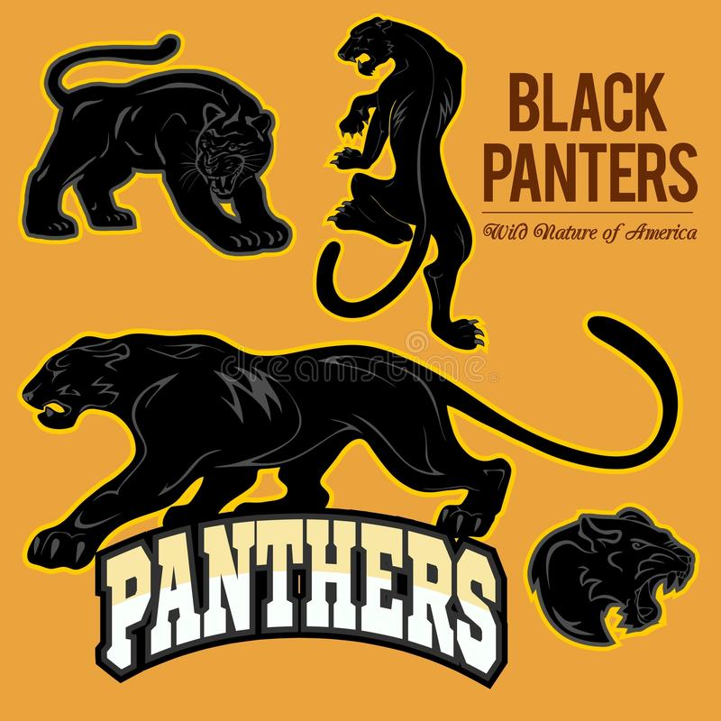 Black Panthers - vector set isoled stock illustration