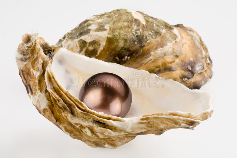 Black pearl stock photography