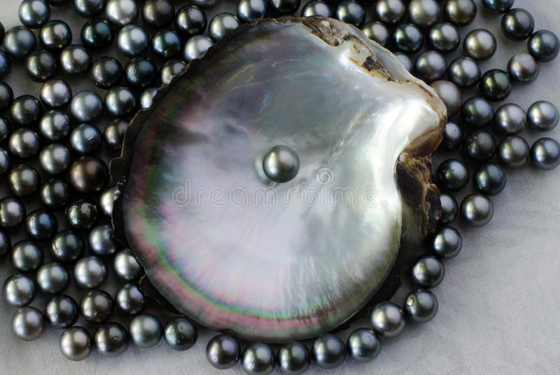 Black pearls royalty free stock photos