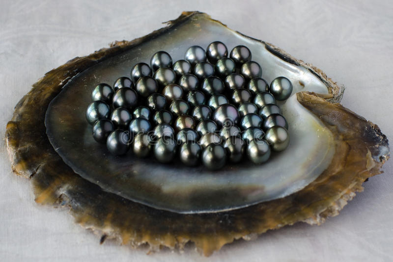 Black pearls royalty free stock image