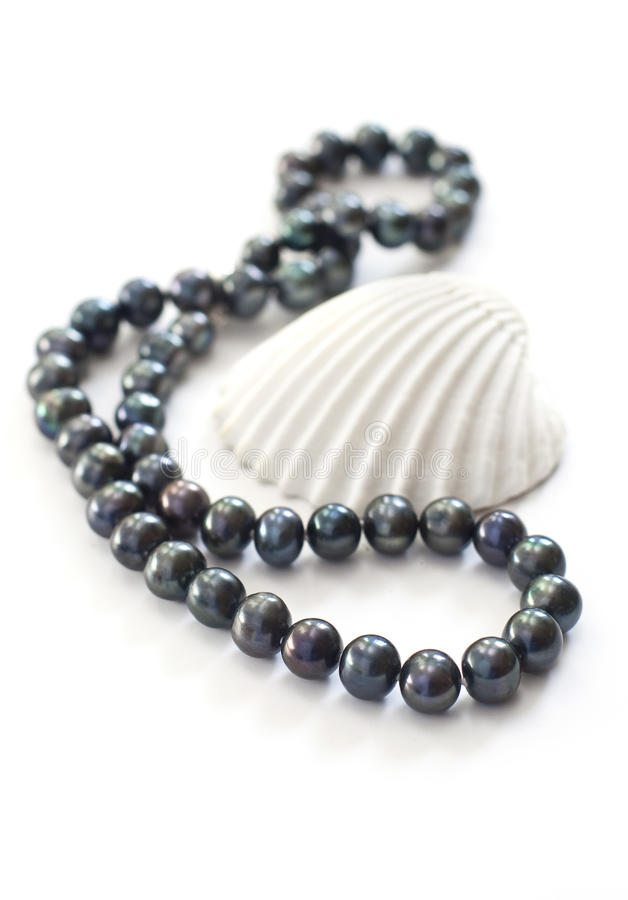 Black pearls and sea shell royalty free stock photography