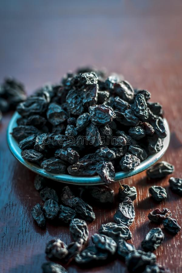 Black raisin on wooden surface. Black raisin or kali kishmish or Zante currant in a white plate on wooden surface in dark Gothic colors to decreases the chance royalty free stock photography