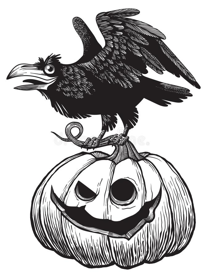 Black raven bird sitting on top of scary Halloween pumpkin vector illustration